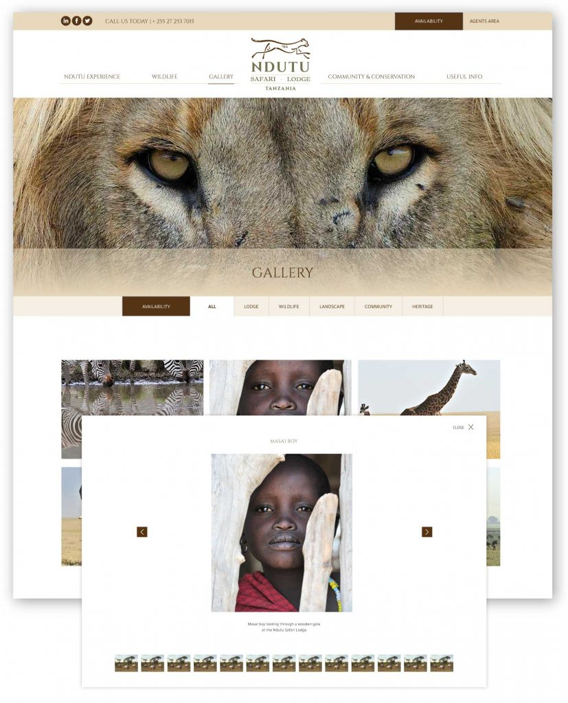ndutu safari lodge photo gallery mockup