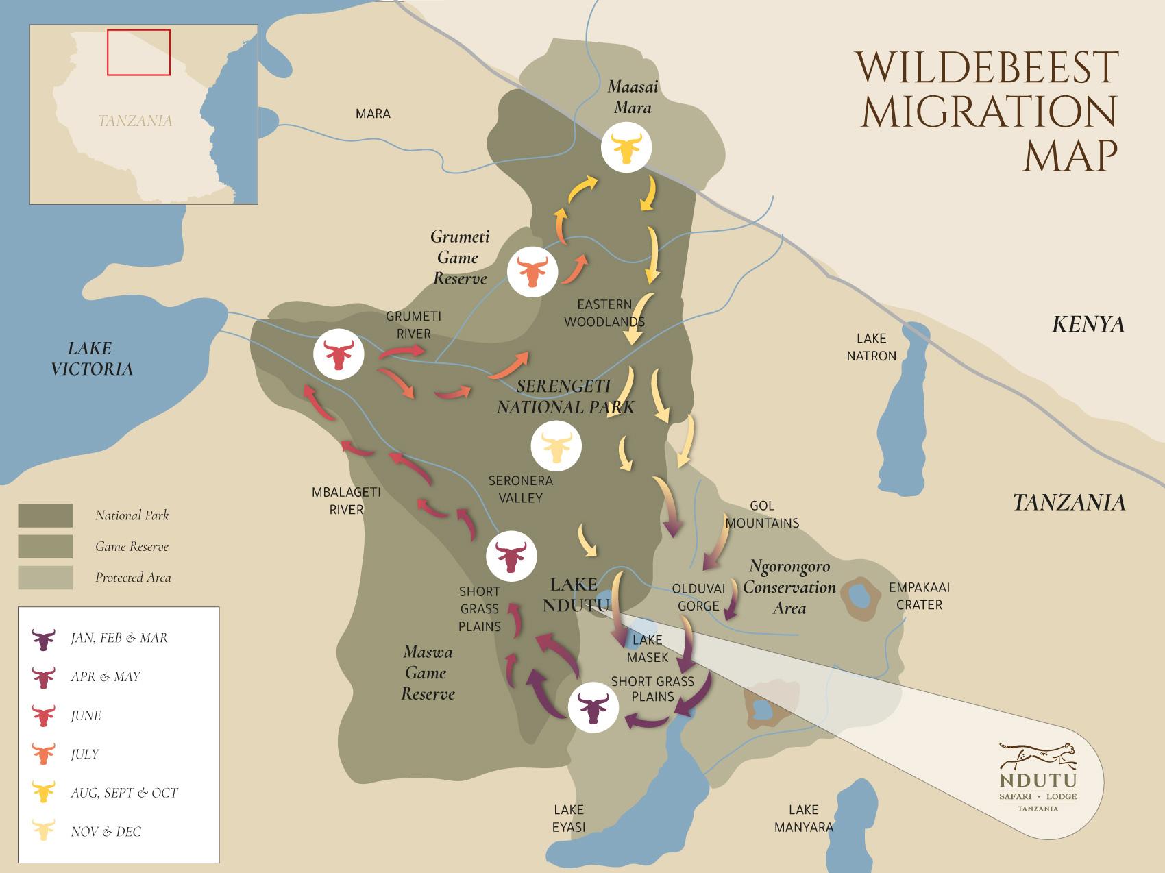 ndutu safari lodge migration map